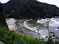 oregon_coast3